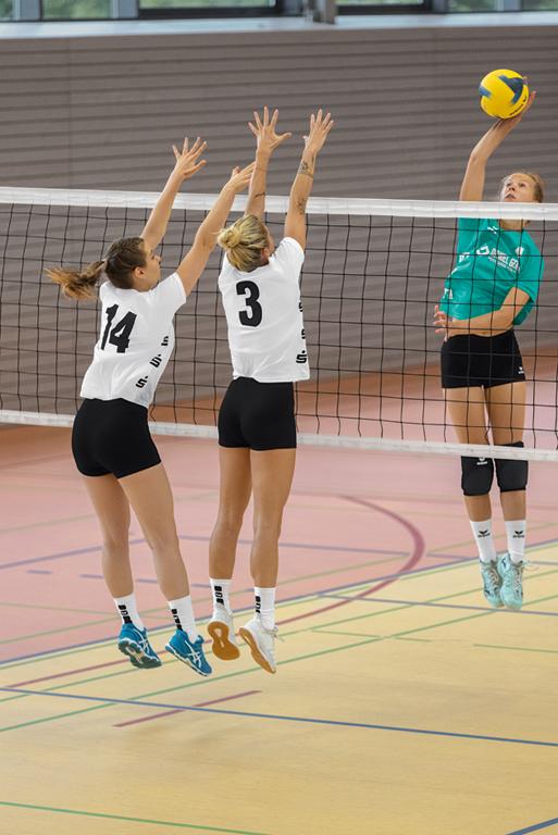 Die wichtigsten Volleyball Regeln einfach erklärt